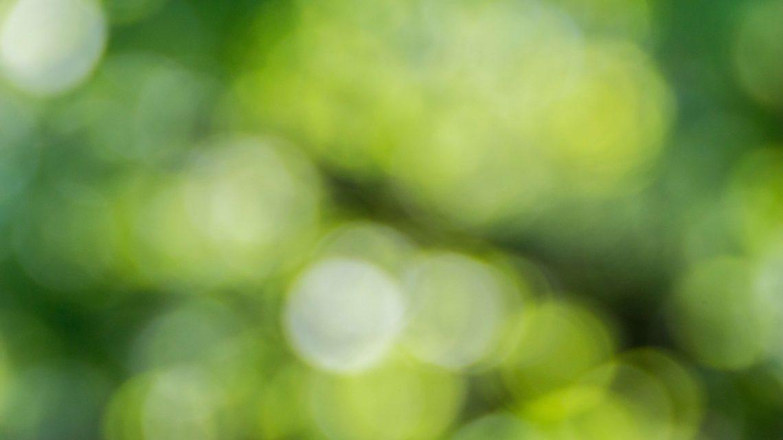 Ecologie : qu'est-ce que le greenwashing ?