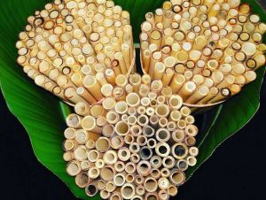 Quelles pailles en bambou choisir ?