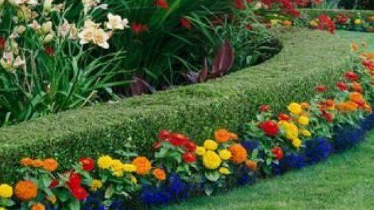 10 façons simples de nettoyer votre jardin au printemps